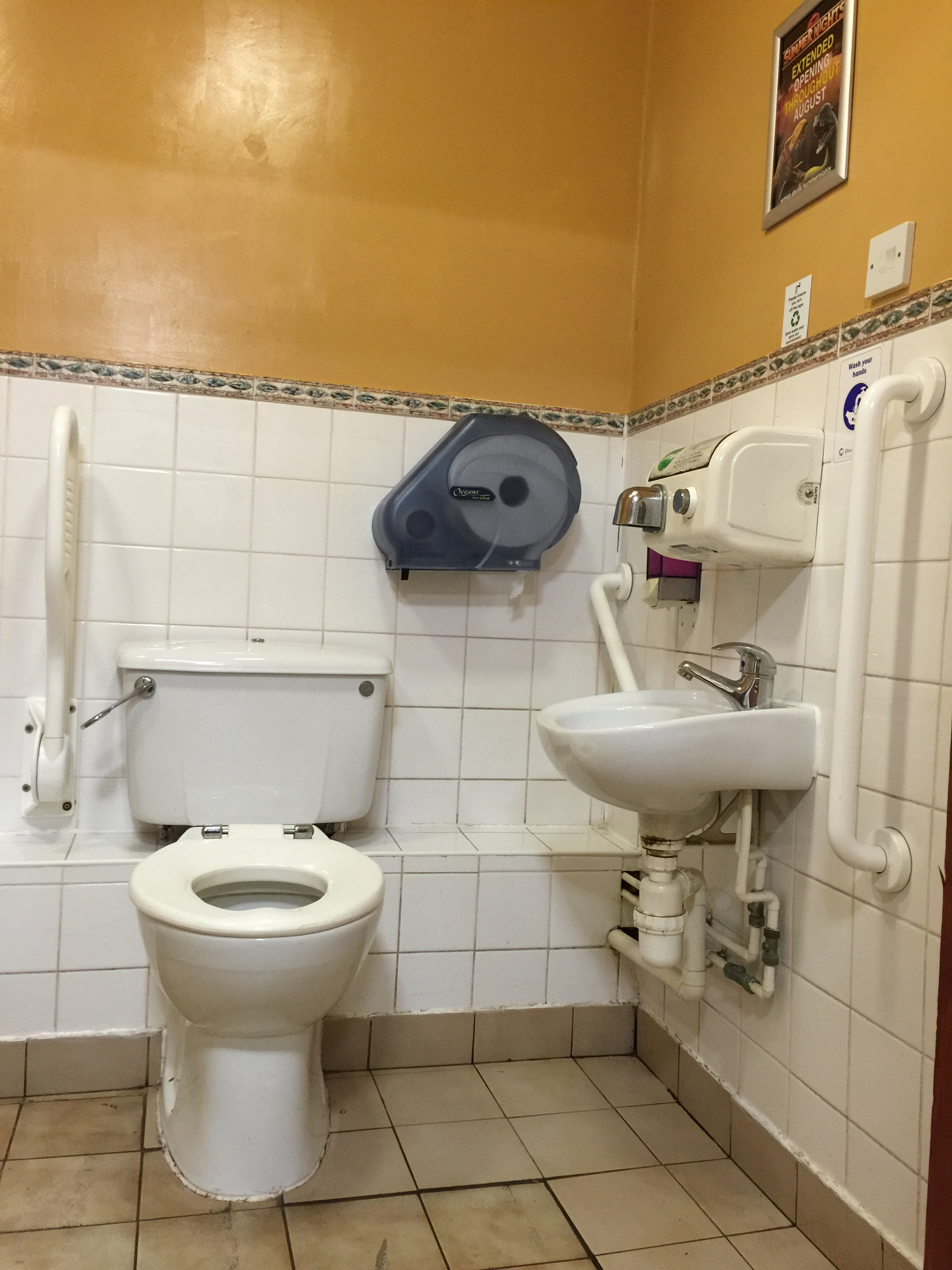 Access Reviews Page 3 The World Of Accessible Toilets